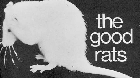 Rock: The Good Rats in NYC